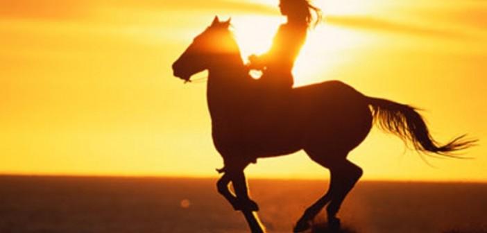 despedidas-girona-excursion-caballo