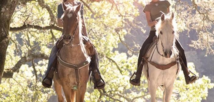 despedidas-patja-aro-Ruta a caballo